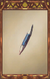 Blue-only Pencil.png