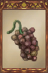 Rotten Grapes.png