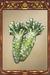 Wasabi Root.png