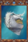 Feathered Hat.png