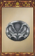 Silver Buckle.png