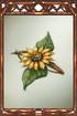 Sunflower Barrette.png