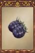 Pickled Eggplant.png