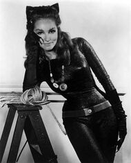 Catwoman 1.jpg