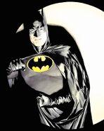 Batman Spotlight 2