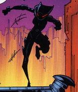 Catwoman Beyond