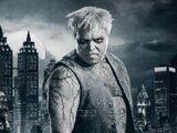 Solomon Grundy (Gotham)