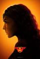 Wonder Woman JL Poster