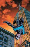 Nightwing072