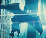 Batarang (snyderverse)