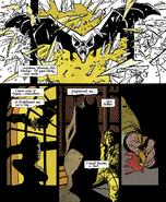 Window Bat Year One