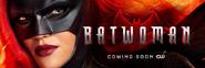 Batwoman banner