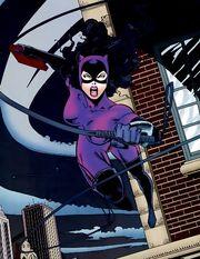 1033888-catwoman 1996 037 23.jpg