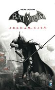 Arkham City (Mini série)