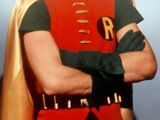 Robin (Dozierverse)