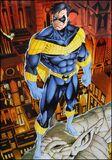 Nightwing poster thibert