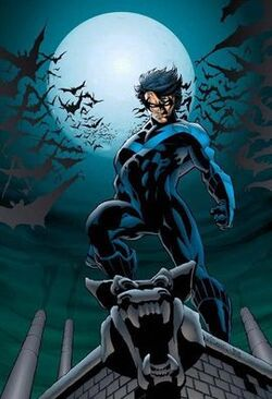 Nightwing 2.jpg