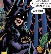 Batman echo