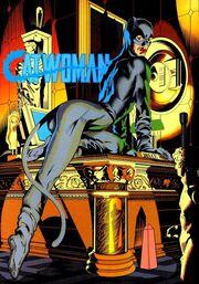 336px-Catwoman 0005.jpg