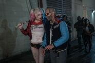 Harley y Diablo