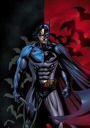 Nightwing-is-the-new-Batman-robin-dick-grayson-nightwing-9734316-600-849.jpg