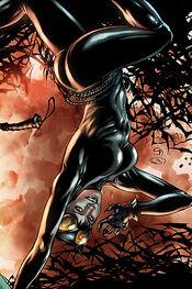 Catwoman-4.jpg