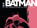 Batman: Des ombres dans la nuit