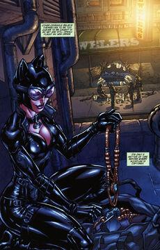 Catwoman AC comic.jpg