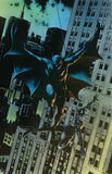 Batman:Catwoman Artist Cover