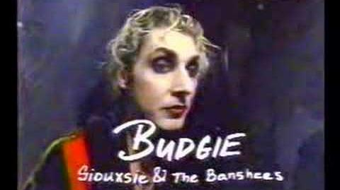 Siouxsie & The Banshees - interview (1992)