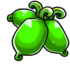 Green actinidia.png