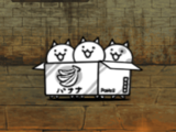 Cats in a Box (Special Cat)