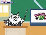 Battle Cats TV