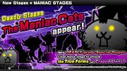 Maniac Cats.jpg