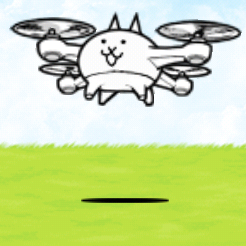 Drone Cat.png