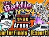 Quarterfinals (Expert)