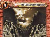 The Canyon Where Sage lives