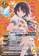 BSC31-CP01 (Secret)