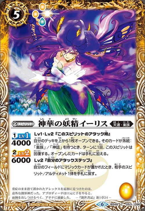 The GrandflowerFairy Iris