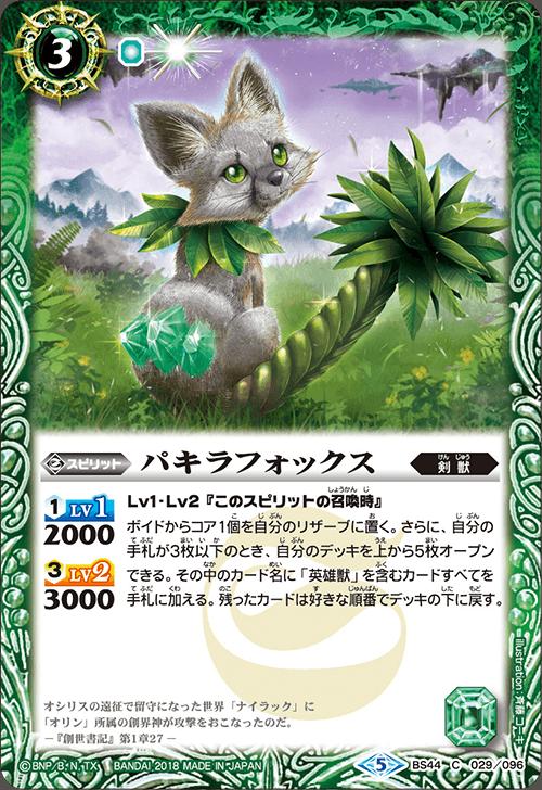 Pachira Fox