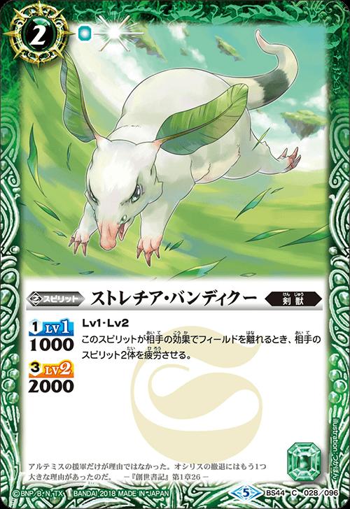 Strelitzia-Bandicoot