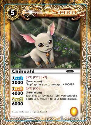 Chihuahl2.jpg
