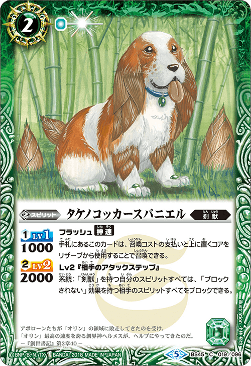 Bamboo Cocker Spaniel