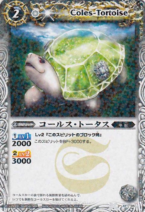 Coles-Tortoise