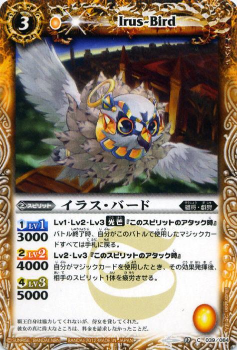 Irus-Bird