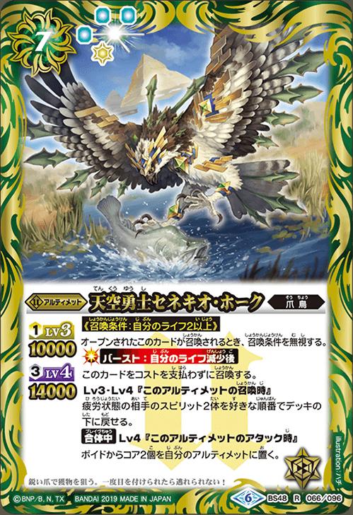 The SkyBraver Senecio-Hawk