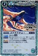 WC2013PB-BS11-021