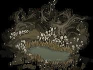 Mushroom grove 01