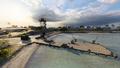 Wake Island 25