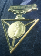 Firestorm Commendation Medal
